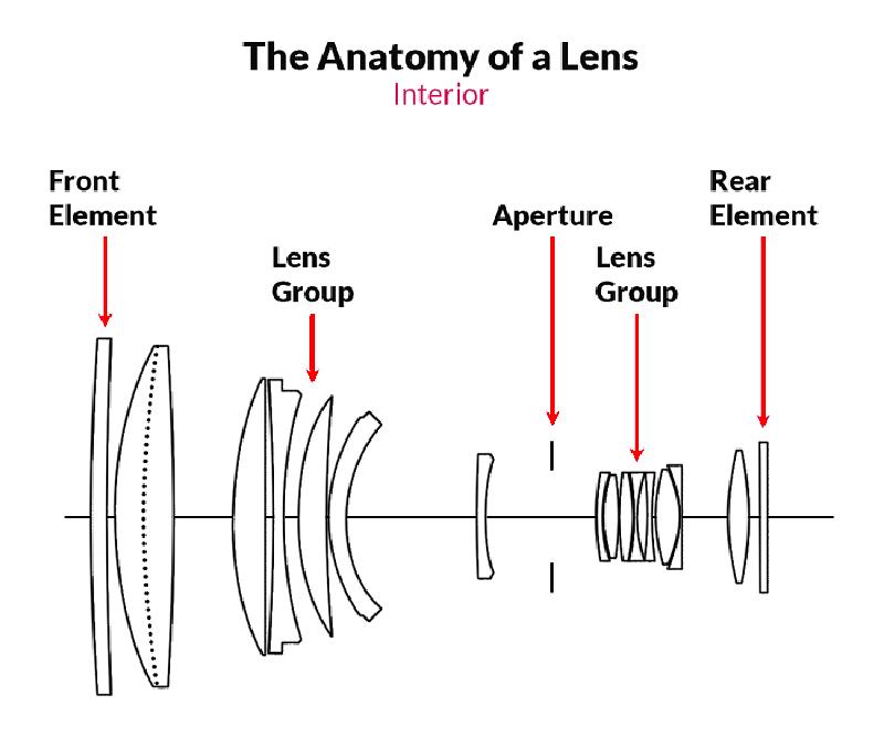 Learn photography - photography basics for beginners - how a camera works - morgan nesbitt creative perth wa